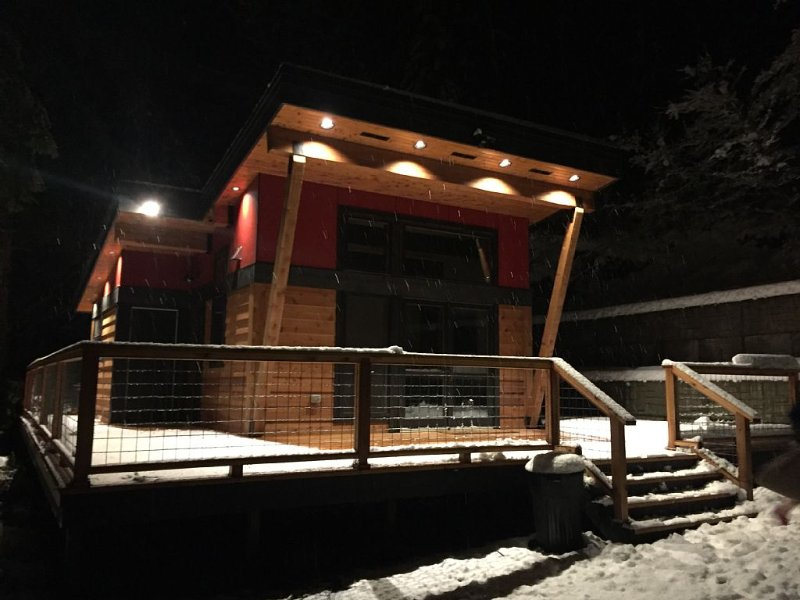 New Modern Mt. Rainier Cabin - Wrap-around deck, Fireplace, Wifi, Netflix + more, holiday rental in Elbe