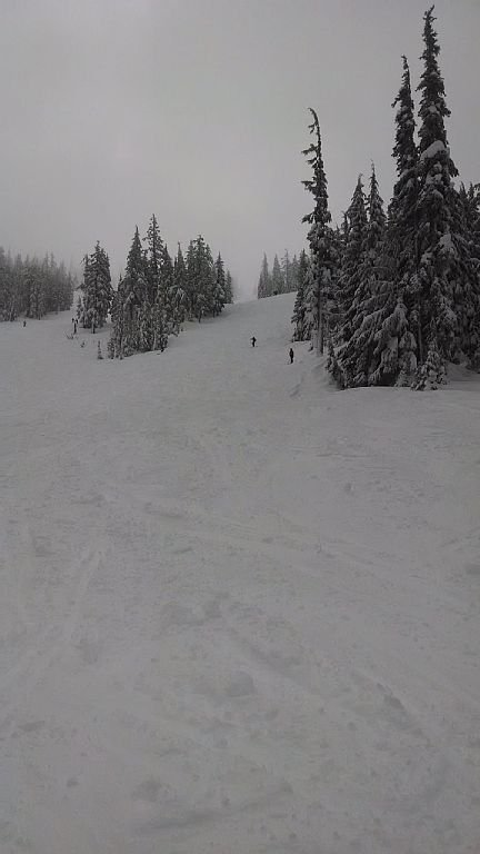 Mt Hood Meadows, Timberline and Ski Bowl are 15 minutes away.