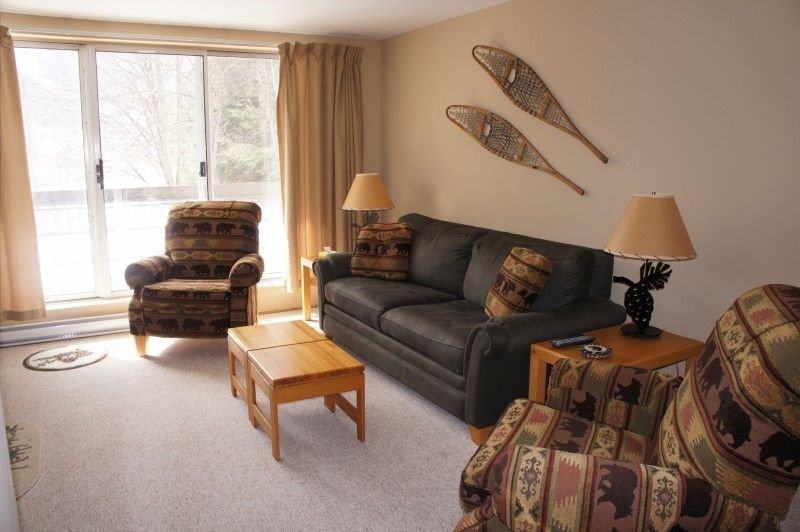 Premier Ski in Ski out Mountainside Condo - Pet Friendly, location de vacances à Warren