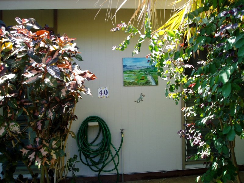 Hale Maluhia - 2 Minutes from the Big Island's Best Beaches, vacation rental in Hawi