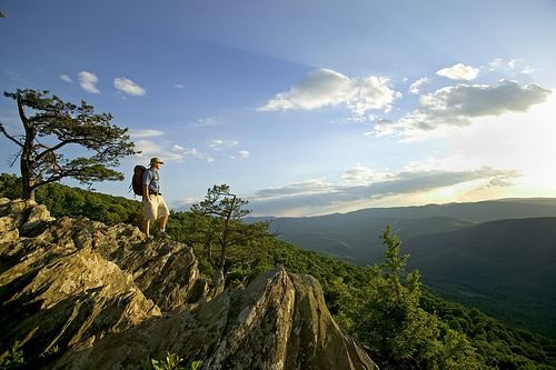 Over 30 Miles of Hiking trails available