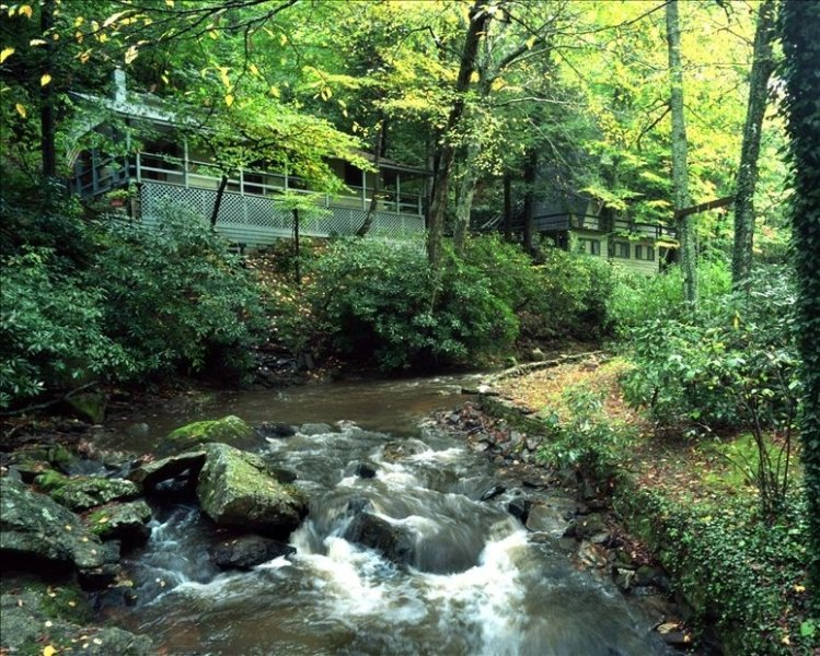 Paradise For All:Woof!, holiday rental in Boone