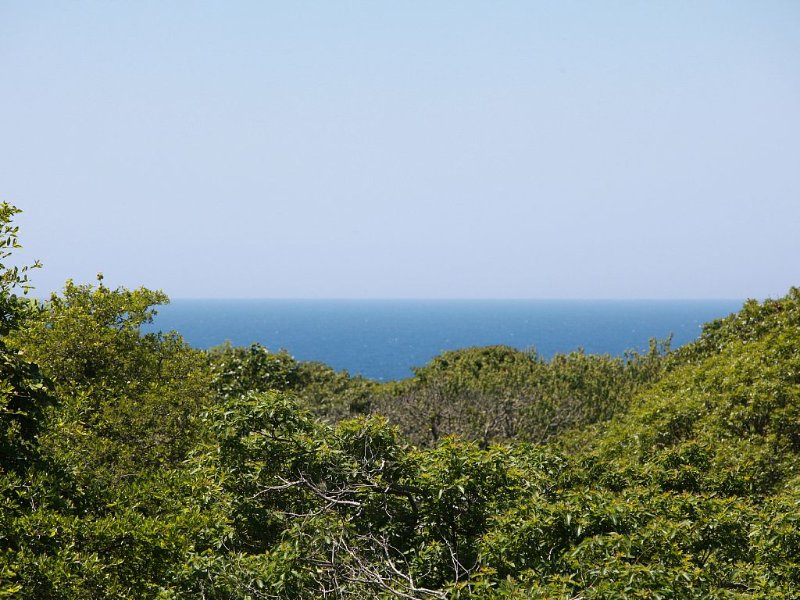 Modern beach house - Walking distance to Philbin Beach, alquiler de vacaciones en Aquinnah