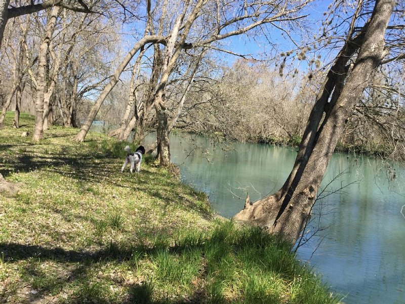 Great Couples Get Away,True RIver Experience(Small town retreat in Central Tx), vacation rental in San Marcos