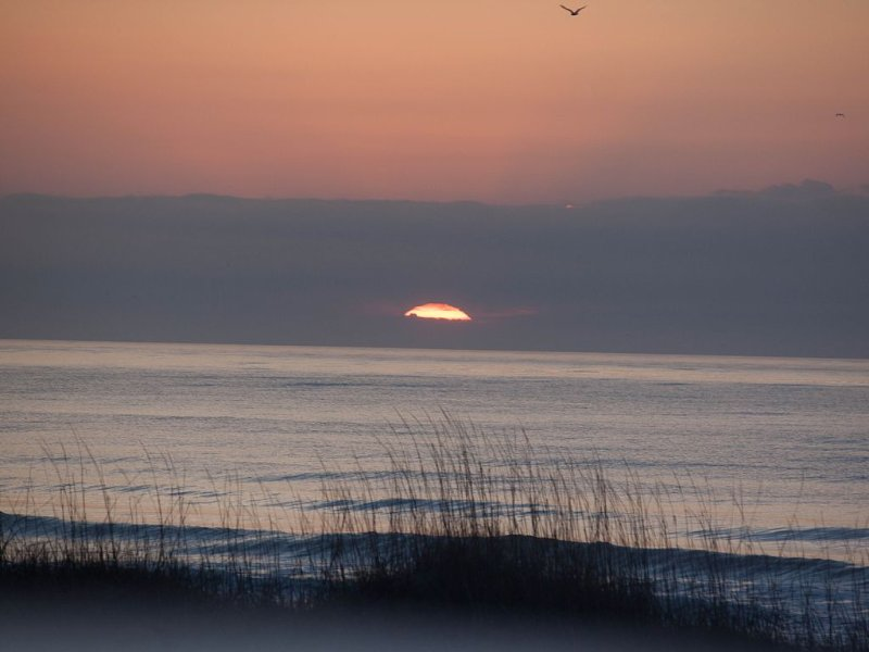 Beautiful Ocean Isle Beach Views; Excellent Sunrises, vacation rental in Ocean Isle Beach