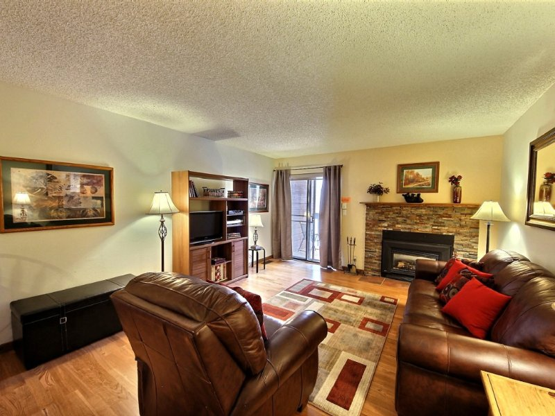 Upgraded 1 Bedroom Frisco Mtn Side Condo, Near Skiing, Wireless, Pool/spa, holiday rental in Frisco