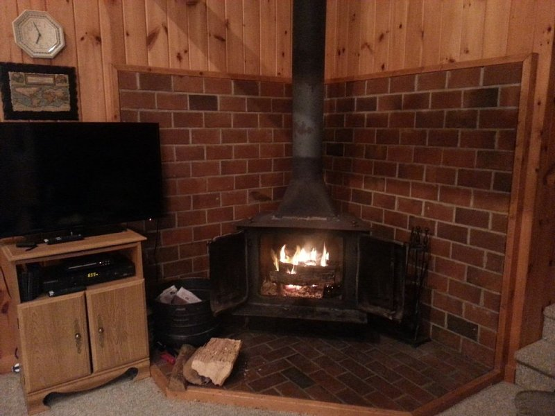 Firewood provided. Home also has electric baseboard heat with thermostats.