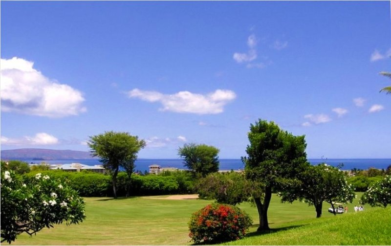 Luxury at its Best W/ Big Ocean Views!!, holiday rental in Wailea