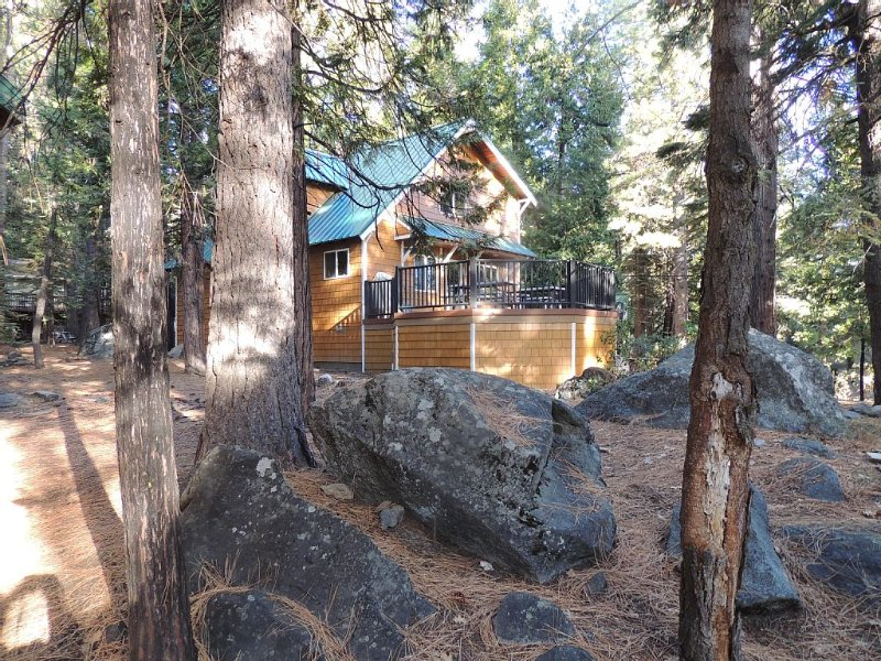 Sierra High Country Luxury Cabin,near Prinecrest,dodge Ridge,Strawberry, vacation rental in Cold Springs
