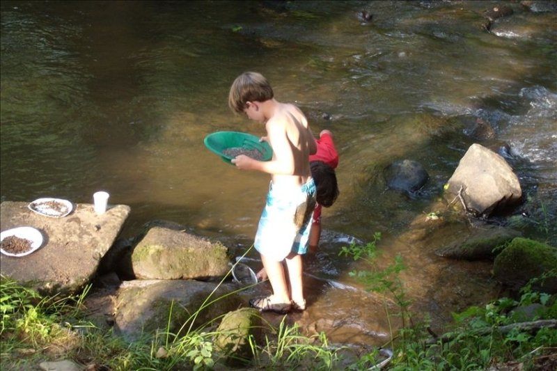 Come Enjoy Trout Fishing In The Rushing Creek, holiday rental in Murphy