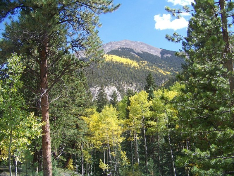 View of Mt Antero from your deck