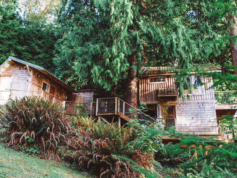 Beachfront Treehouse in the Heart of Puget Sound, Ferienwohnung in Southworth
