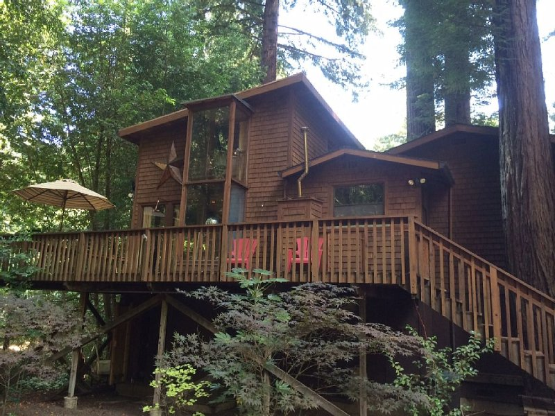 Beautiful Secluded Cabin Walking Distance To Town, holiday rental in Guerneville