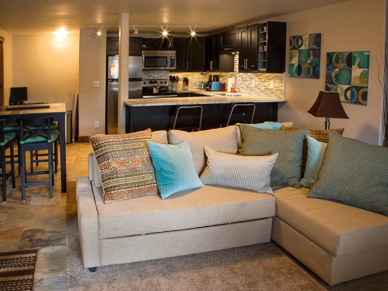 500 Ft. From Slope!  Newly Remodeled Studio, holiday rental in Steamboat Springs
