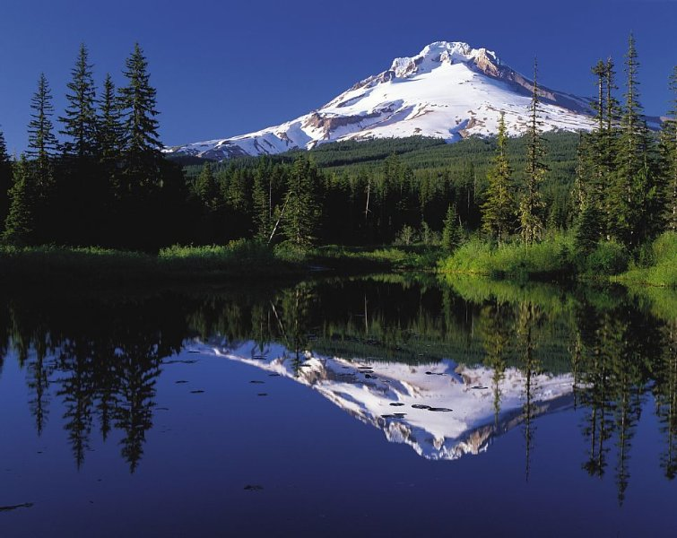 Mt Hood from Mirror Lake. Both near cabin, but not directly visible from it.