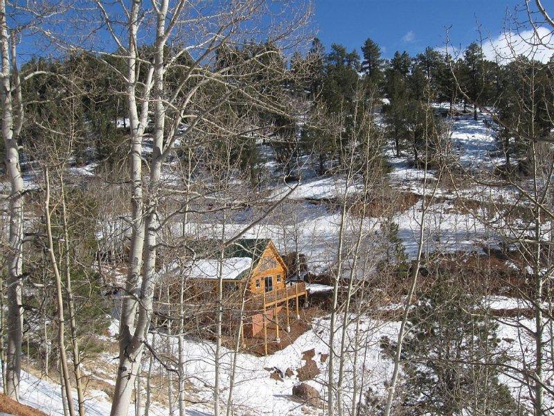 Family Mountain Retreat, vakantiewoning in Divide