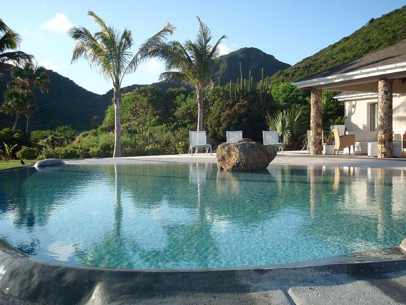 Amazing swimming pool... La Roche dans l'Eau..., vakantiewoning in Grand Fond