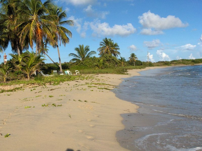 WALK TO BEACHES, BUCK ISLAND VIEW, QUIET, TROPICAL SPACE FOR QUIET PEOPLE, holiday rental in St. Croix