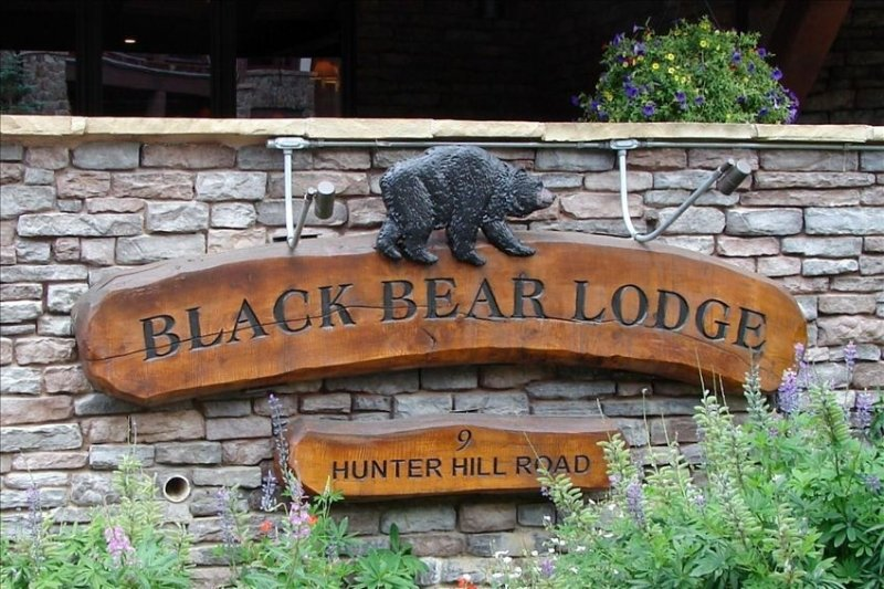 Black Bear Lodge, Amazing Views! Available 3/6-3/11, 3/20-3/25, & 4/2-4/10!, holiday rental in Crested Butte