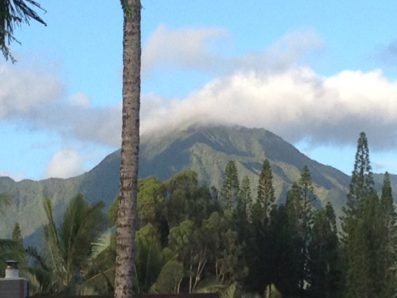 Magical 4 Bedroom 3 Bath Home With Awesome Mountain Views, vacation rental in Princeville
