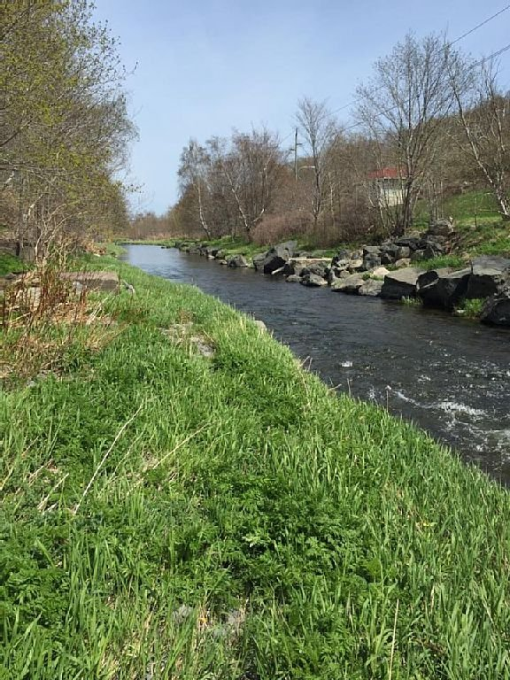 Waterford river runs right through the yard! catch a fish or just relax.