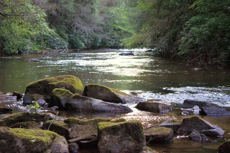 Enjoy the sparkling view of the water looking upstream