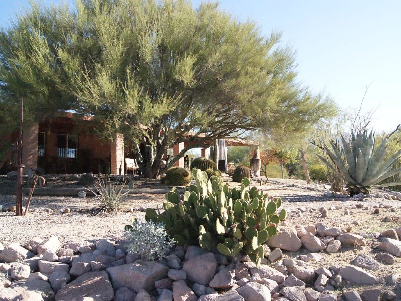 Gorgeous Views,  Landscaping, Pristine Pool Near Catalina Mountains, WiFi, More!, vacation rental in Oro Valley