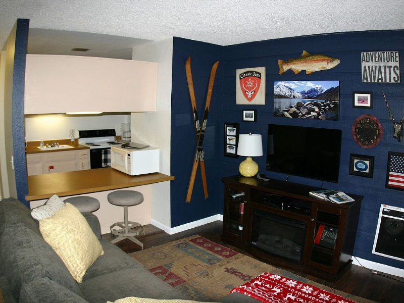 Charming Studio , WiFi, Smart TV and Pets Welcome free of charge., holiday rental in Mammoth Lakes