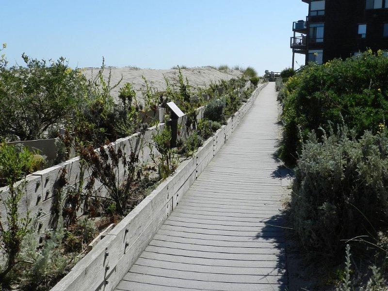 Boardwalk pathway leading to ocean
