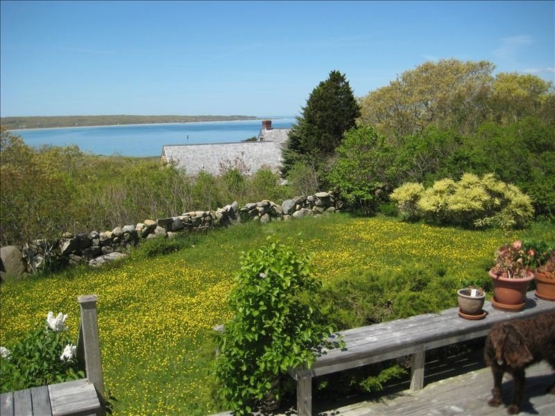 Fully Appointed Water View House  Ten Minutes Walk from Beach – semesterbostad i Aquinnah