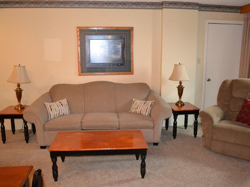 Front room, with pull -out sofa sleeper