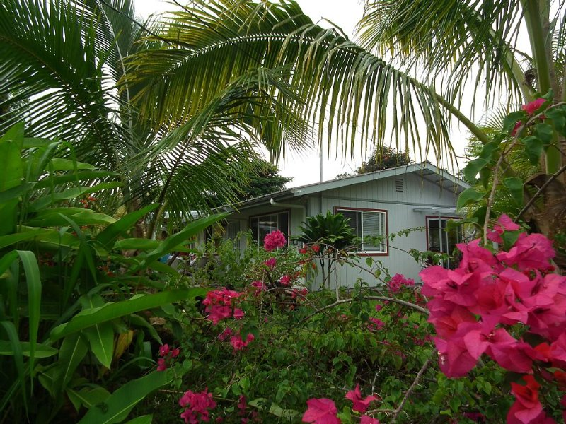 The Peaceful Place In A Lush Rainforest, vacation rental in Kapoho