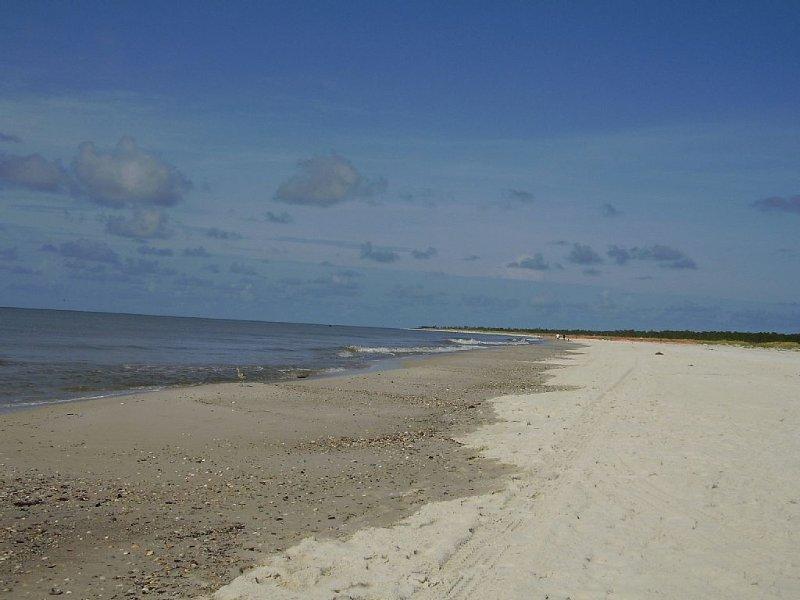 The Pristine beach.
