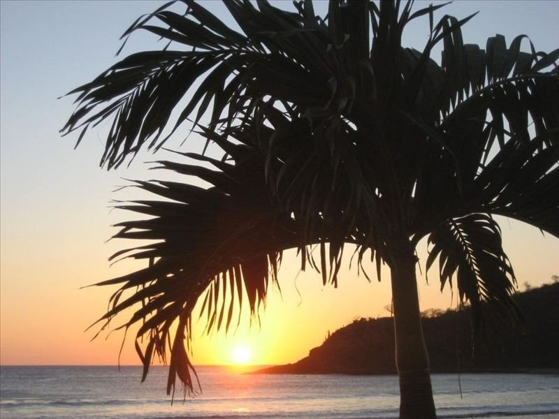 Mar Y Sol Beach House, Only 100 m from beautiful Beach, Wi-Fi, Tropical Haven, holiday rental in El Jobo