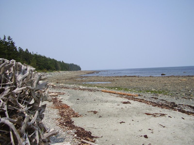 Pilgrim's Seaside Cabin, location de vacances à Comox Valley