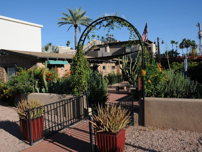 Historic Cottage Located In Old Town Scottsdale, Arizona, alquiler de vacaciones en Scottsdale