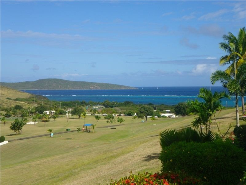 View from the patio overlooking the turquoise Caribbean and Buck Island!