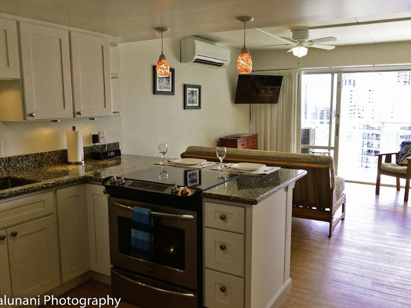 SALE--Paradise is yours! Beautiful Contemporary Condo w/Full Kitchen, vacation rental in Honolulu
