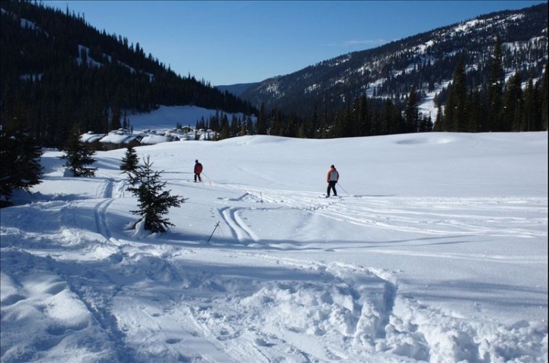 Winter Wonderland True Ski in & Ski Out Sun Peaks Condo! – semesterbostad i Sun Peaks