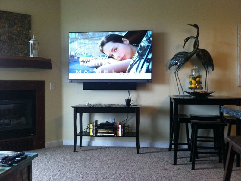 65' 3D HD TV with Bose Sound System - it's completely incredible.