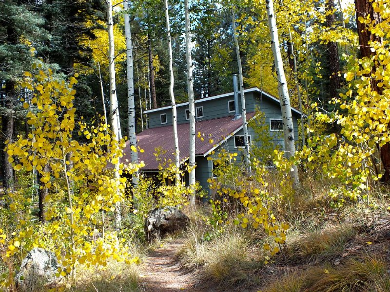 The Alpaca Barnhaus in the Jemez Mountains-Quiet & Comfortable at 8700', holiday rental in Jemez Springs