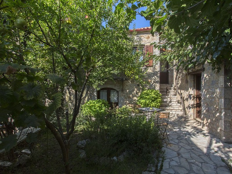 Villa Koromilies Arachova, holiday rental in Polidrosos
