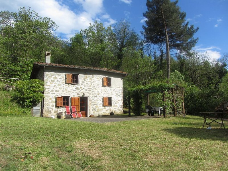 Cottage set in it's own woods near Lucca, holiday rental in Borgo a Mozzano
