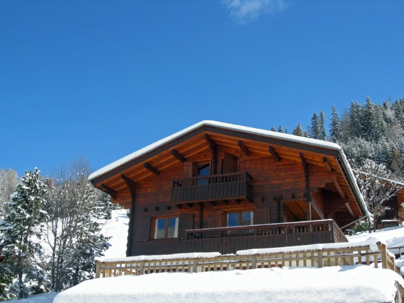 Beautiful Chalet Sophia With Outdoor Jacuzzi, vacation rental in La Clusaz