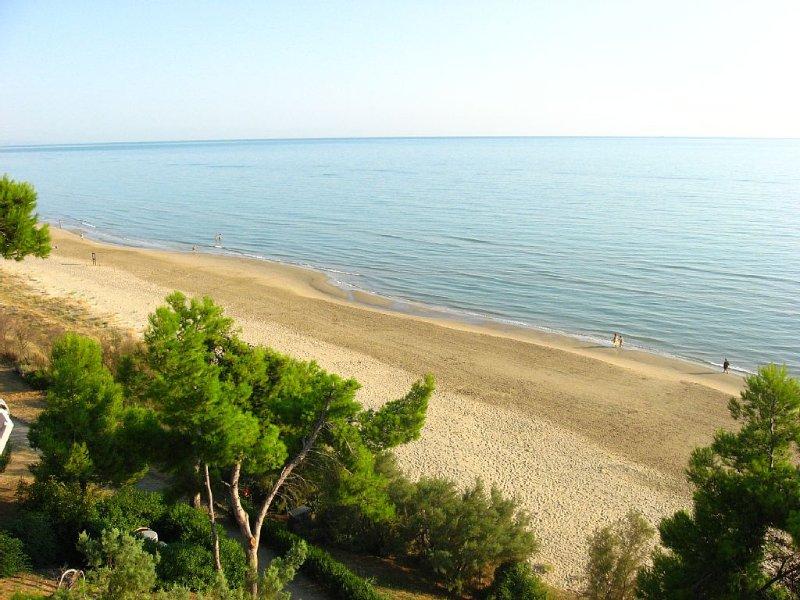 La spiaggia dell'Area Marina Protetta Torre del Cerrano.