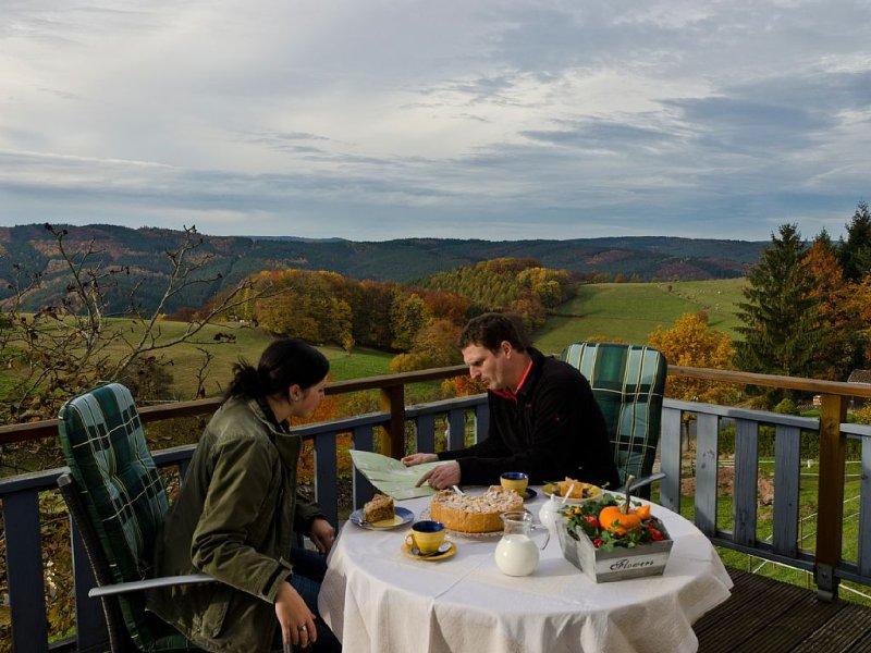 Ferienhaus 2 am Ortsrand  in Toplage, alquiler de vacaciones en Neckarsteinach