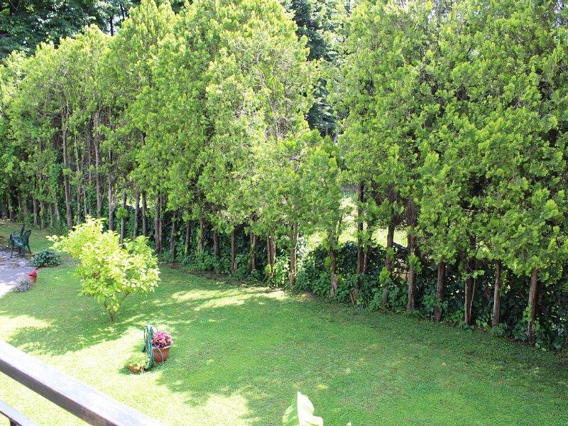 Villa Charlie in Versilia, holiday rental in Pietrasanta