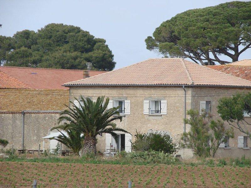 MAISON DE CAMPAGNE AU COEUR  DES VIGNES., holiday rental in Vendres