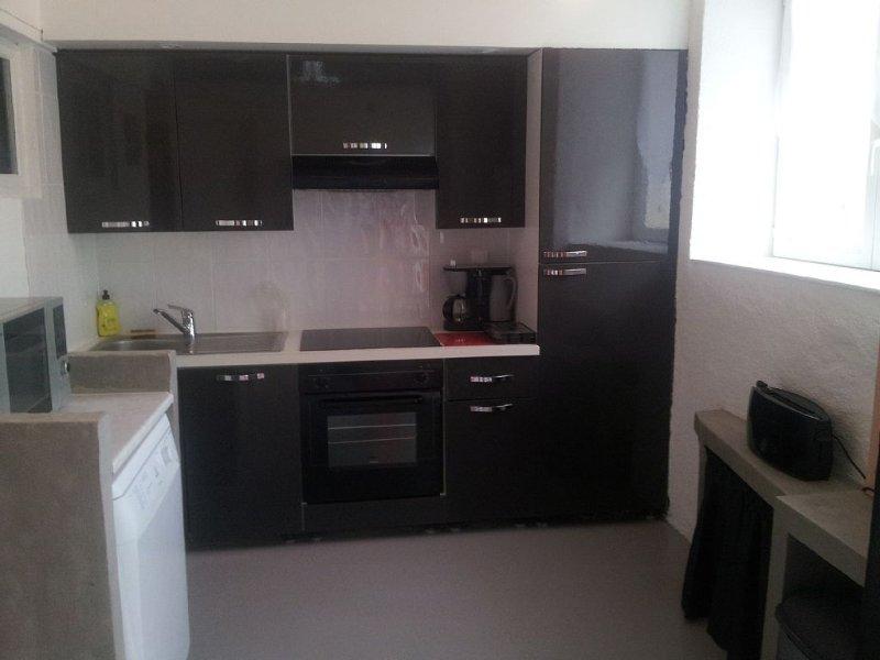 Gite de La Roche Cathare, holiday rental in Maury