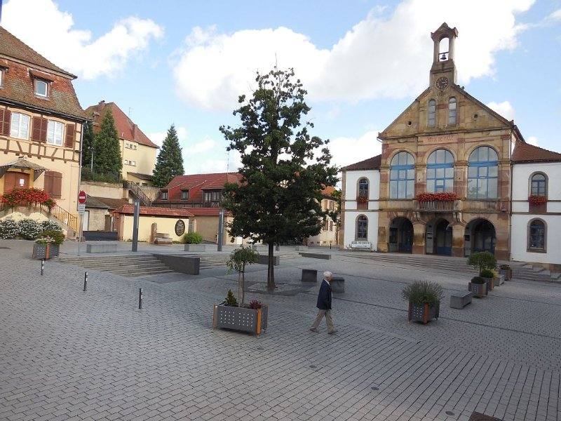 gite 2 personnes entre Strasbourg et Colmar, aluguéis de temporada em Epfig